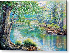 Acrylic Print featuring the painting Nixon's Memories Of The Rapidan by Lee Nixon