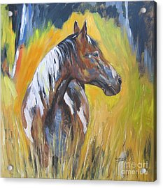 Acrylic Print featuring the painting No Fences by Debora Cardaci