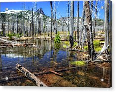 Acrylic Print featuring the photograph No Name Pond by Cat Connor