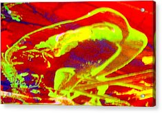 No One Kisses A Sleeping Frog Acrylic Print by Bruce Combs - REACH BEYOND