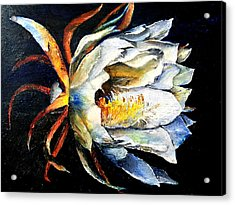 Nocturnal Desert Blossom Acrylic Print