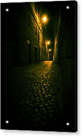 Nocturnal  Acrylic Print