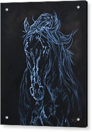 Nocturno Acrylic Print by Jana Goode