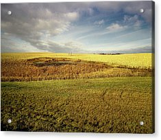 Nodak Field Acrylic Print
