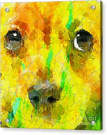 Noise And Eyes In The Colors Acrylic Print by Stefano Senise