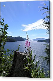 Flowers Of Nootka Sound Acrylic Print