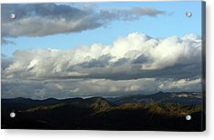 Acrylic Print featuring the photograph Norcal Wilds by Holly Ethan