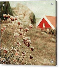 Nordic Summer Acrylic Print