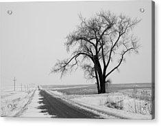North Dakota Scenic Highway Acrylic Print by Bob Mintie