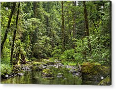 North Souixon Creek Acrylic Print