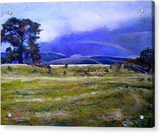 Northeast Tasmania Australia 1995  Acrylic Print by Enver Larney