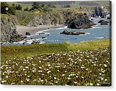 Northern California Coast Scene Acrylic Print