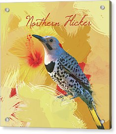 Acrylic Print featuring the photograph Northern Flicker Watercolor Photo by Heidi Hermes