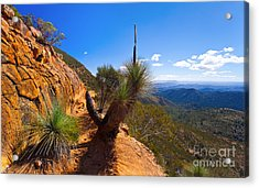 Northern Flinders Ranges And The Abc Range Acrylic Print by Bill  Robinson