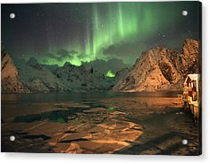 Northern Light In Lofoten, Nordland 1 Acrylic Print