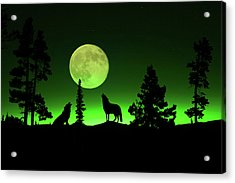 Northern Lights Acrylic Print by Shane Bechler
