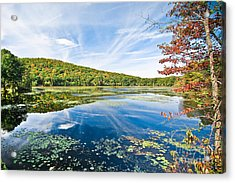 Northern New Jersey Lake Acrylic Print by Ryan Kelly