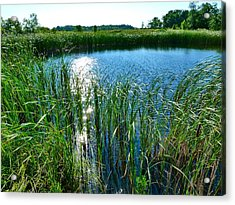Acrylic Print featuring the photograph Northern Ontario 2 by Claire Bull