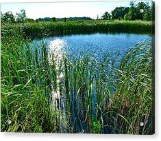 Northern Ontario 2 Acrylic Print