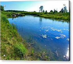Northern Ontario 3 Acrylic Print by Claire Bull