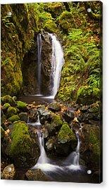 Northwest Paradise Acrylic Print