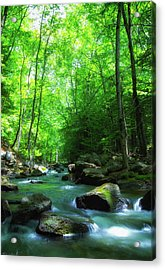Northwood Brook Acrylic Print