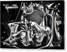 Norton Commando 750cc Cafe Racer Engine Acrylic Print by Tim Gainey