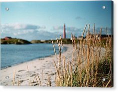 Norwegian Grass Acrylic Print by Gregory Barger