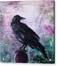 Not A Feather Then He Fluttered Acrylic Print by Sandy Applegate