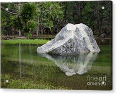 Not An Iceberg Acrylic Print by Debby Pueschel
