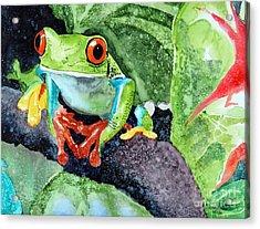 Not Kermit Acrylic Print