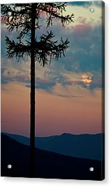 Acrylic Print featuring the photograph Not Quite Clearcut by Albert Seger