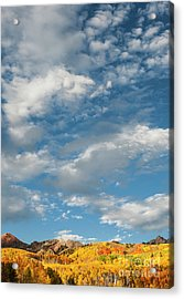 Acrylic Print featuring the photograph Nothin' But Blue Skies by The Forests Edge Photography - Diane Sandoval