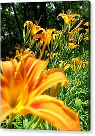 Nothing But Flowers Acrylic Print