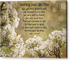 Nothing Gold Can Stay Acrylic Print