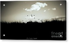 Nothing Lasts Acrylic Print