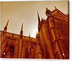 Notre Dame At Sunset Acrylic Print by Tony Grider