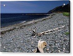 Nova Scotia Pebble Beach Acrylic Print by Sally Weigand