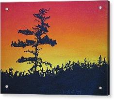 Nova Scotia Tree Acrylic Print by Tabitha Marshall