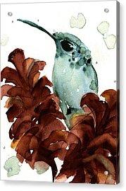 November Hummer Acrylic Print
