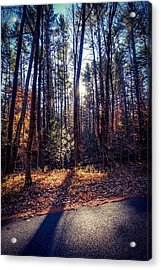 Acrylic Print featuring the photograph November Light by Kendall McKernon