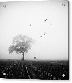 November Acrylic Print by Manuela Deigert