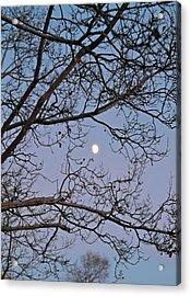 November Moon Acrylic Print