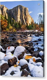 November Morning Acrylic Print by Anthony Michael Bonafede