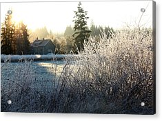 November Morning Acrylic Print by Barbara  White