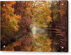 Acrylic Print featuring the photograph November Reflections by Jessica Jenney