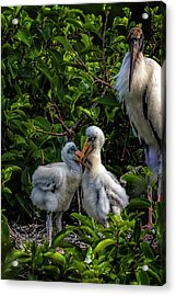 Now, Children... Acrylic Print