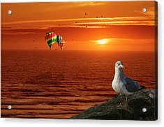 Now Those Are Funny Looking Birds Acrylic Print