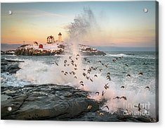 Nubble Wave With Sandpipers Acrylic Print by Benjamin Williamson