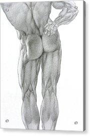 Nude 2b Acrylic Print by Valeriy Mavlo